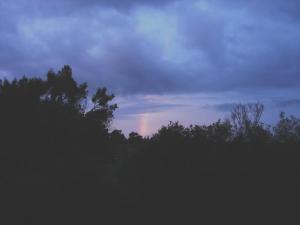 レイニーシーズンの虹