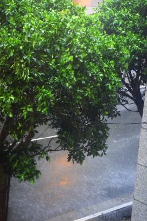 豪雨のサンフランシスコ