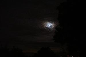 2009年最後の満月
